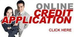 Online Credit Application